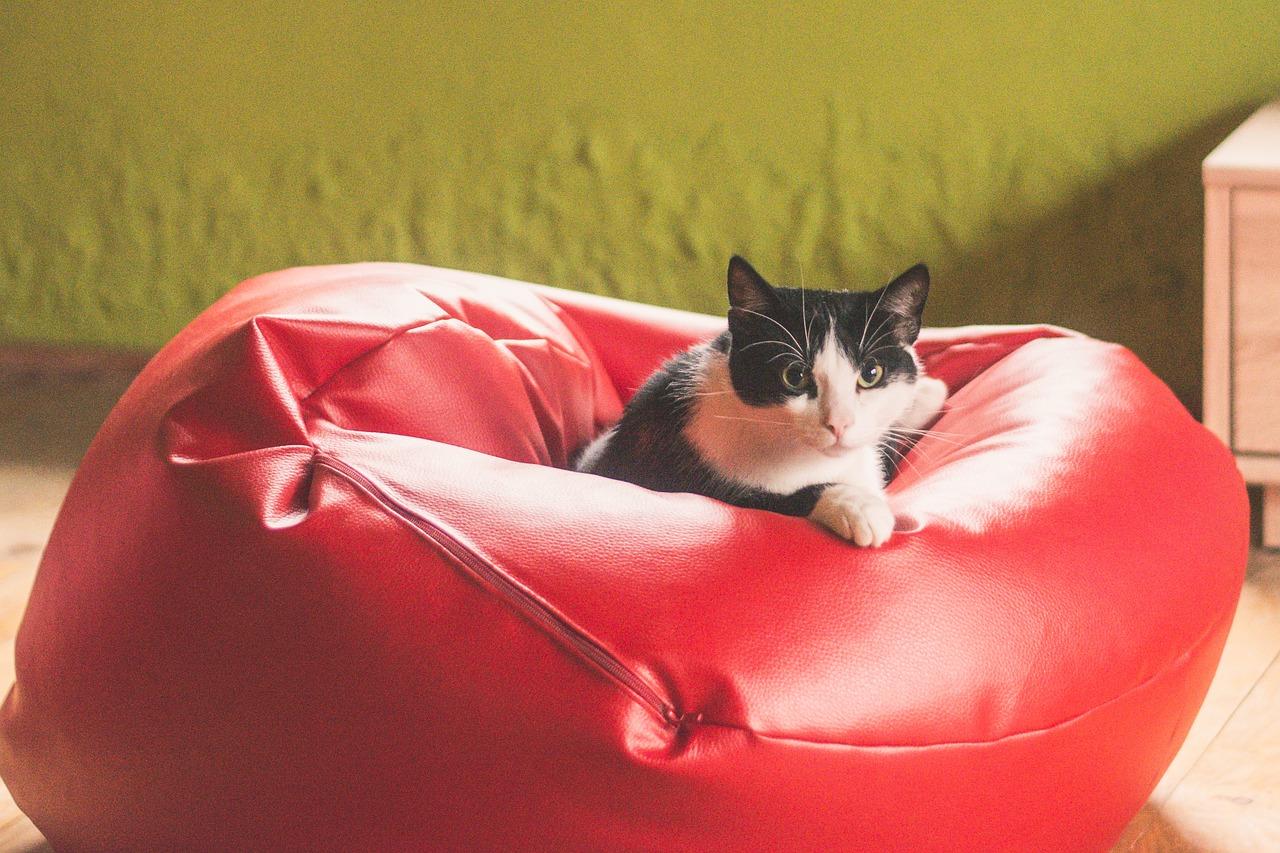 Les bienfaits de s'asseoir sur un pouf poire à la maison.